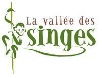Logo la vallee des singes 1